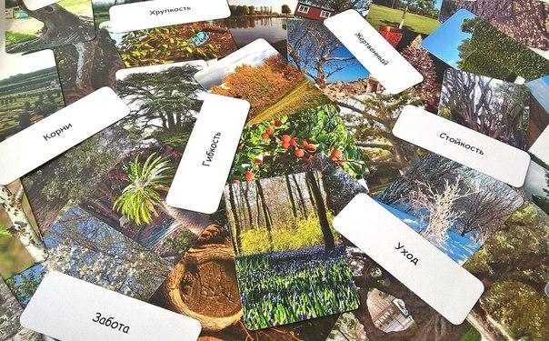 Макомания Дерево как образ человека, интернет-магазин мак, купить мак
